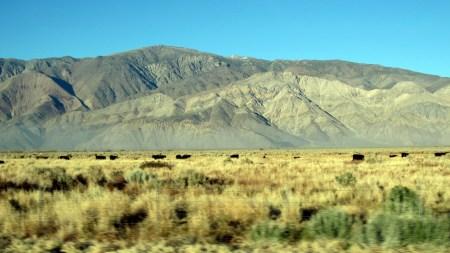 California-hills-desertification
