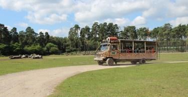 Airtimers vor Ort: Happy Birthday Serengeti Park Hodenhagen