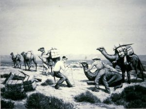 The US army experimented with use of camels instead of horses and it failed.