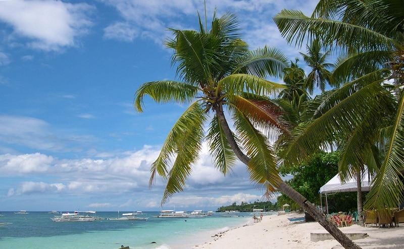the beach of Grand Palladium Jamaica