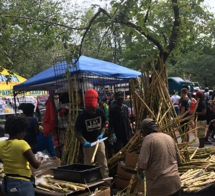 Labor Day-sugar-cane