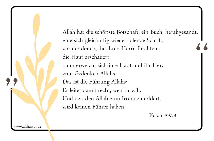 Allah hat die schönste Botschaft, ein Buch, herabgesandt, eine sich gleichartig wiederholende Schrift, vor der denen, die ihren Herrn fürchten, die Haut erschauert; dann erweicht sich ihre Haut und ihr Herz zum Gedenken Allahs. Das ist die Führung Allahs; Er leitet damit recht, wen Er will. Und der, den Allah zum Irrenden erklärt, wird keinen Führer haben. 39:23