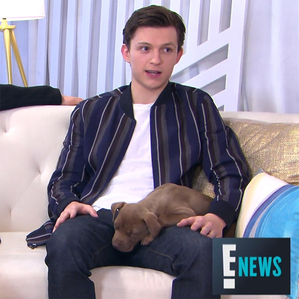 Tom Holland Explains His American Shower Routine to Benedict     Tom Holland Explains His American Shower Routine to Benedict Cumberbatch    E  News