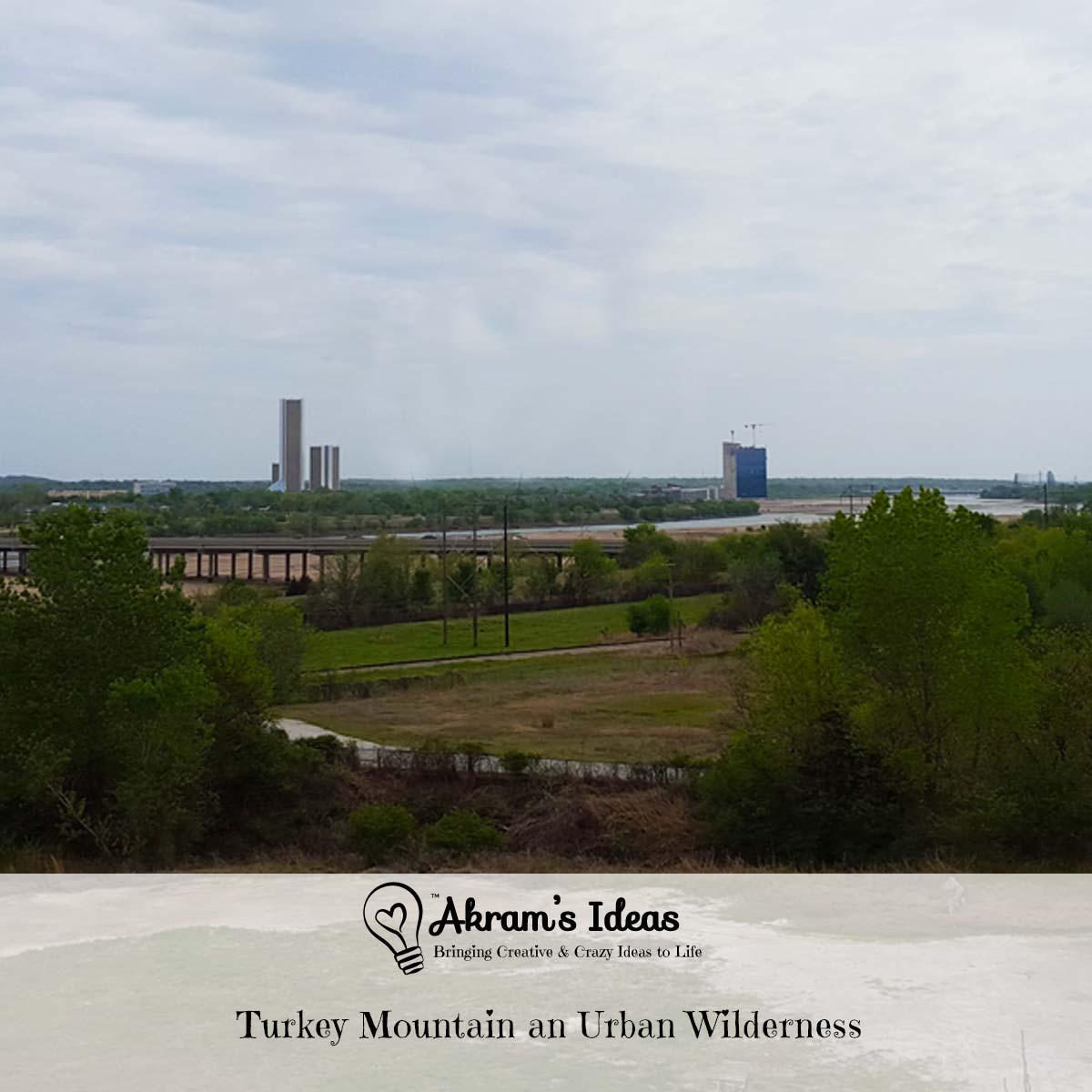 Turkey Mountain an Urban Wilderness