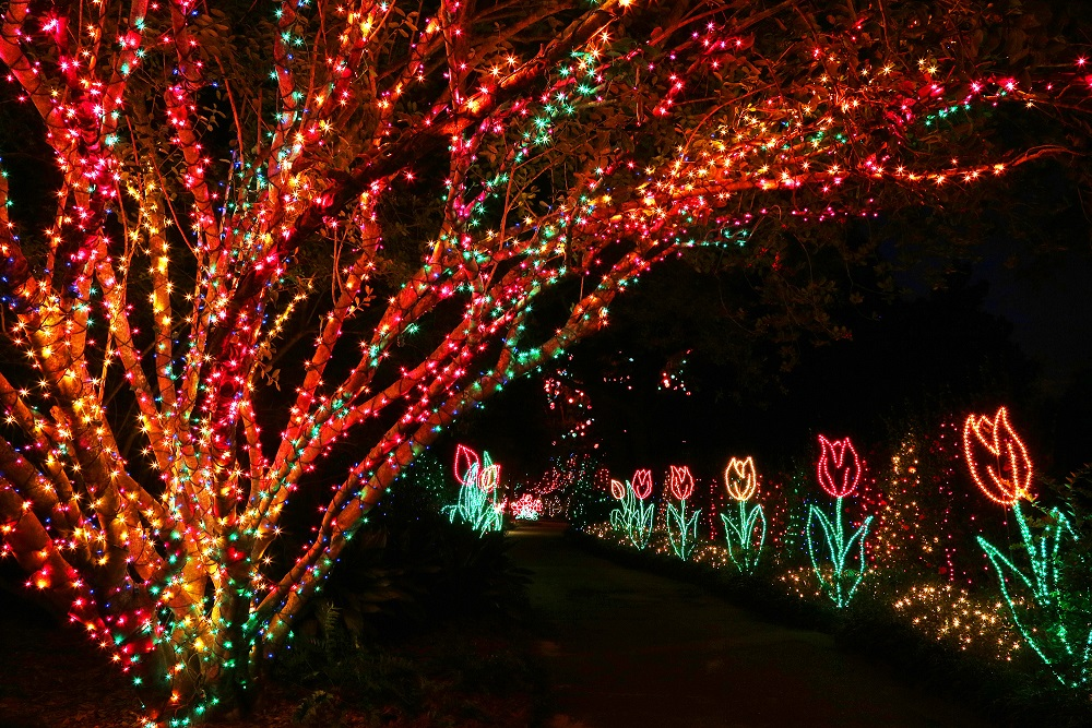 Bellingrath Gardens To Flip Switch On 20th Magic Christmas In Lights Tonight Alabama News Center