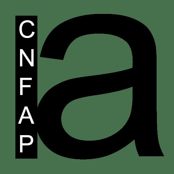 Conseil National Français des Arts Plastiques