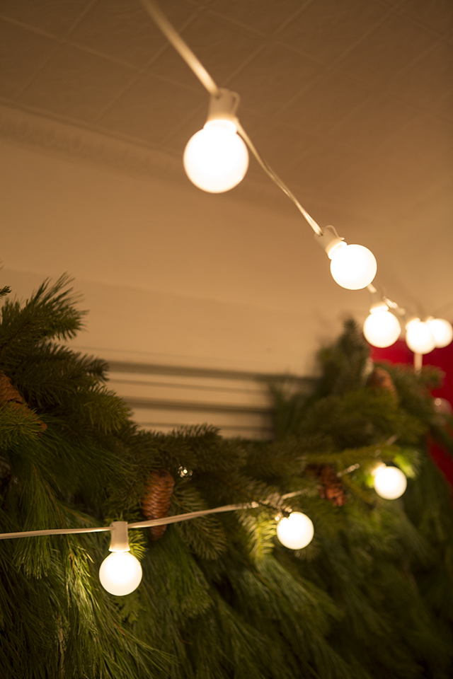 Holiday Party Lights