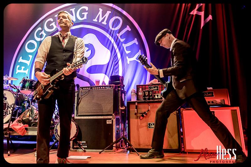 Flogging Molly / 2013