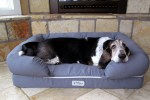 The search for an indestructible dog bed