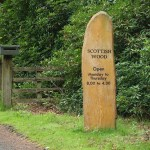 Scottish Woodland Trust