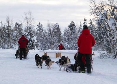 Lapland Blog A 25 400