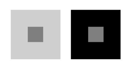 Optische illusie: beide kleine vierkantjes hebben de zelfde grijswaarde. Het linker rechthoekje lijkt donker door de lichte omgeving. Het rechter rechthoekje lijkt lichter door de zwarte omgeving.