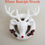 Winter Rudolph Wreath