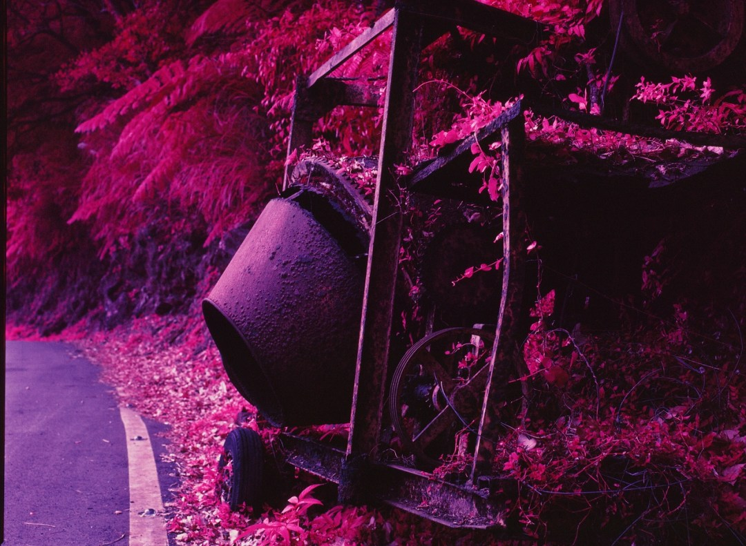 Mixed - Kodak Aerochrome 1443 - ISO200 - Planar 80/2.8 - Orange #21 filter / 120 as 6x4.5