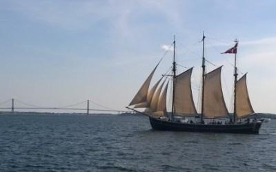 TallShips Fredericia