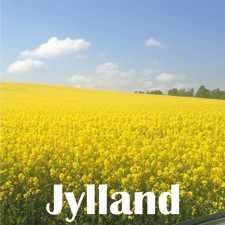 Jylland 225
