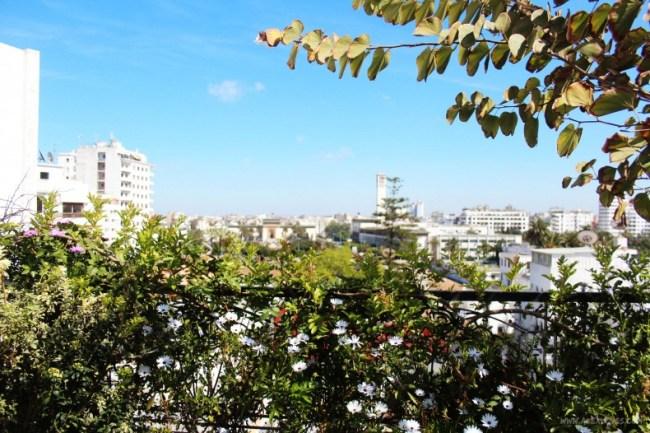 892382574 #MoroccoInStyle: Casablanca