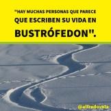 alfredovela-bustrofedon