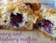 honey_blueberry_muffin