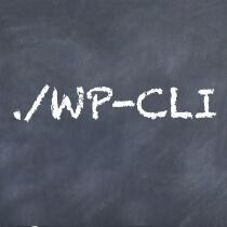 wp-cli-config