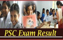 PSC Exam Result 2015 DPEResult.Teletalk.com.BD