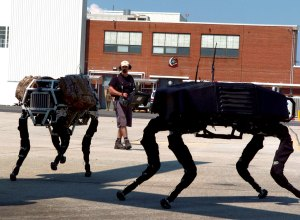 Dynamically stable Quadruped Robots