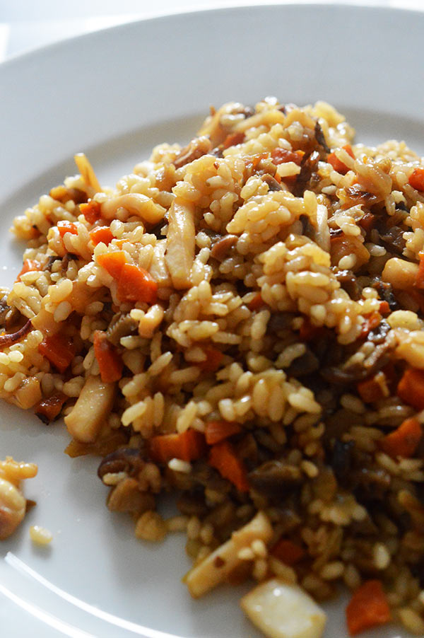 arroz-cerca-vertical
