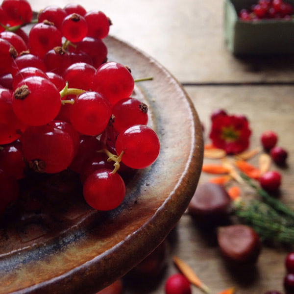 AllYourSites-Frutos Rojos-2