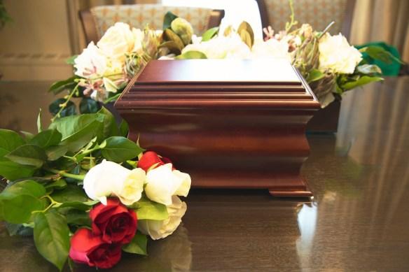 Isobel's ashes.  (c) Allyson Scott