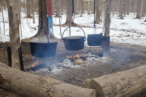 Maple sap/syrup boiling over fire