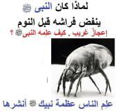 هل تعلم لماذا كان ينفض النبى صلى الله عليه وسلم فراشه قبل النوم ؟