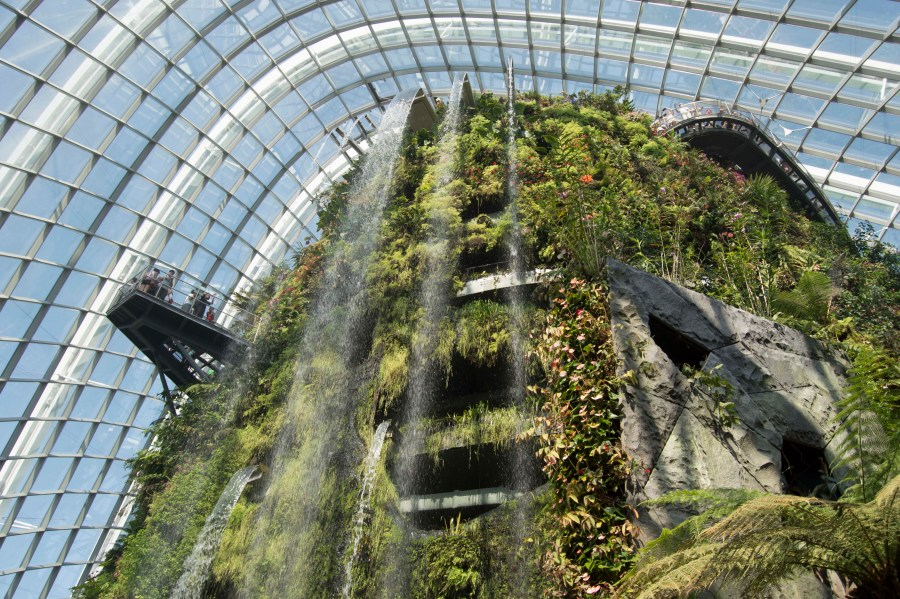It's all contained in a large dome to approximate the cloud forest climate