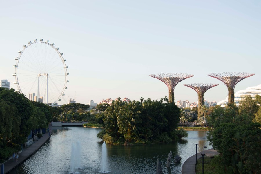 The trees and ferris wheel, another of the Singapore skyline's main features
