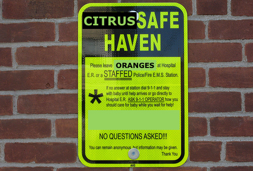 citrus-safe-haven