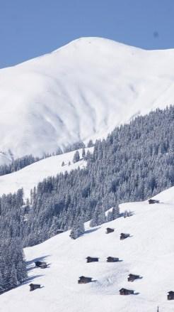 Tux im Winter