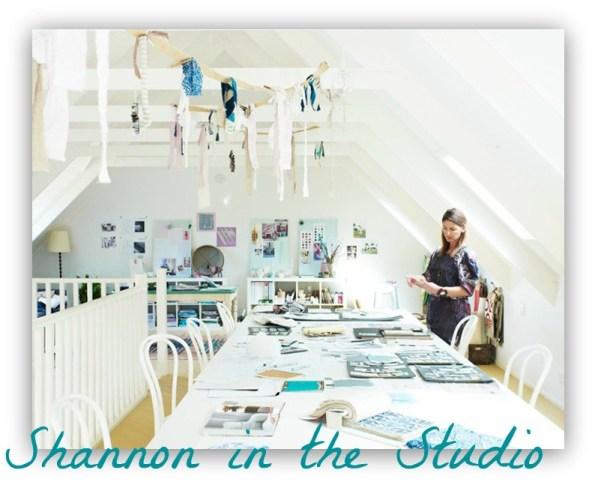 shannon fricke workshops for decorating