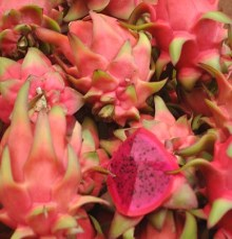 dragonfruit (Anabelle Harari '91)