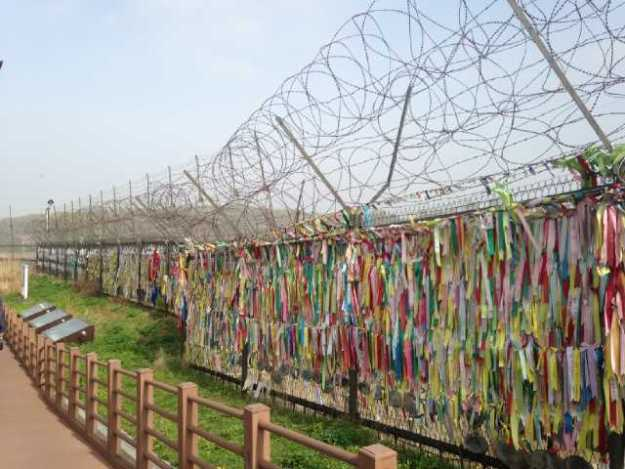 Barbed wired fence