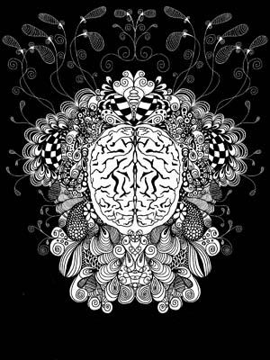 brainondoodle
