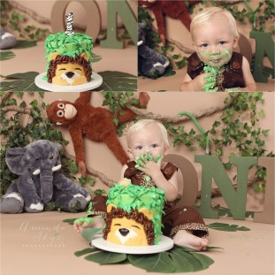 jungle cake smash, cake smash orange county, boy cake smash, cake smash photographer orange county, amanda skye photography