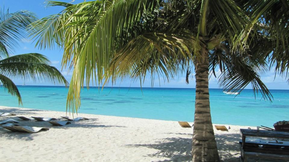 Saona- República Dominicana