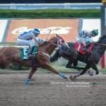 7a Carrera - Frannie Horse