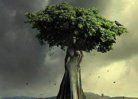 Frau-zu-Baum ohne Beine