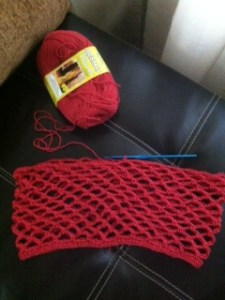 Here is my first picture of what I have accomplished a few hours after getting the yarn.