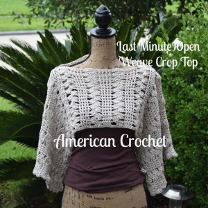 Last Minute Open Weave Crop Top
