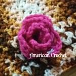Rossette Flower