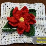 Poinsettia Washcloth