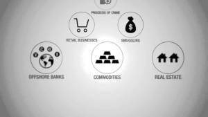 Wynyard Financial Crime Analytics Explained