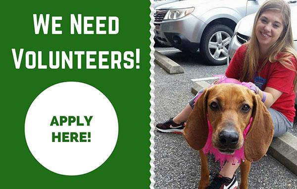 click-to-volunteer