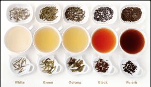 Black-tea-Green-Tea-White-tea-Oolong-tea-Pu-erh-tea_thumb3